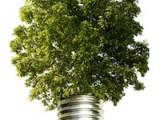 eco_Idea